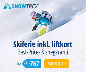 Skirejser inkl. liftkort